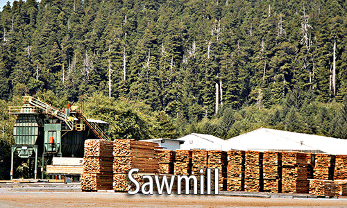Sawmill alignment services
